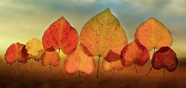 Fall Leaves #3 by Rebecca Cozart