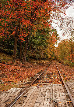 Kathleen K Parker - Fall Leaves and Train Track WV