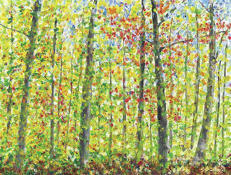 Fall leaves by Stan Sweeney