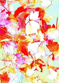 Fall leaves by Wonju Hulse