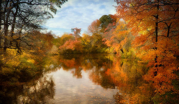 Fall Magic on Long Island by Vicki Jauron
