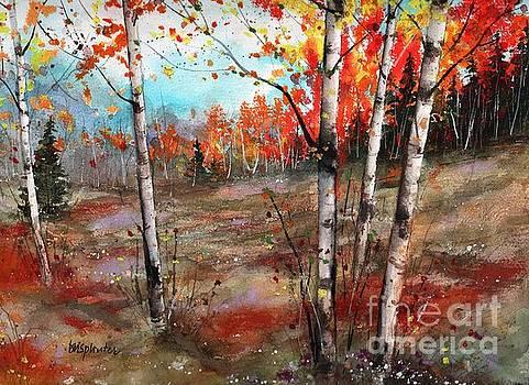 Fall Meadow by Diane Splinter