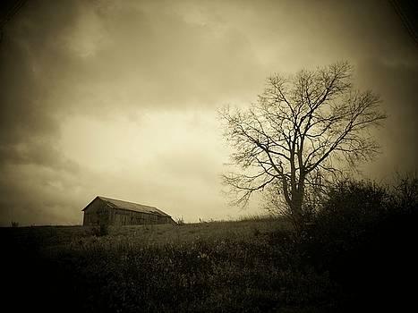 Fall by Michael L Kimble