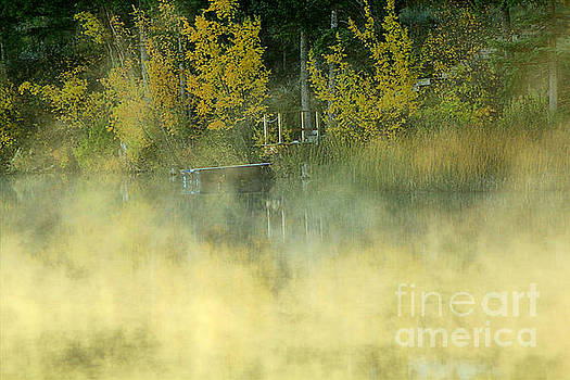 Roland Stanke - Fall Mist