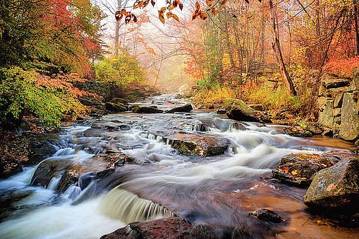 Fall Morning At Gunstock Brook by Robert Clifford