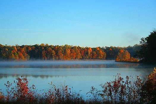 Fall morning Spotsylvania Virginia by Troy  Skebo