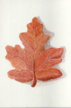 Fall Oak Leaf by  Joseph Soulagnet