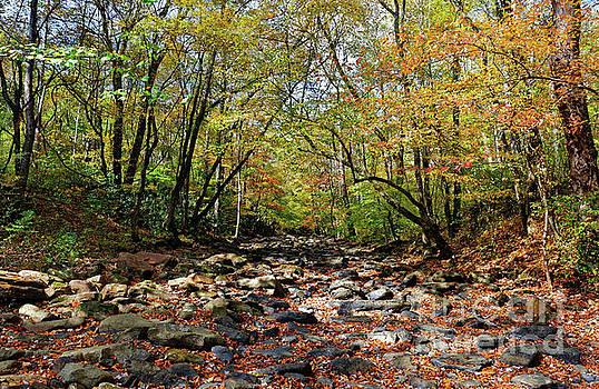 Paul Mashburn - Fall On Clifty Creek