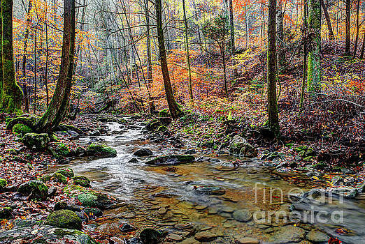 Fall On Judge Branch Creek by Paul Mashburn