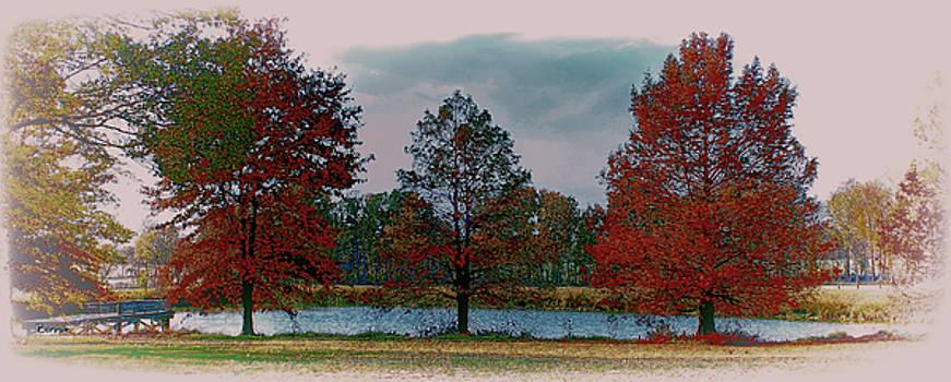 Fall on the Farm by Bonnie Willis