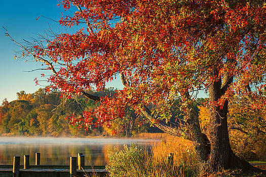 Fall on the Patuxent by Cindy Lark Hartman