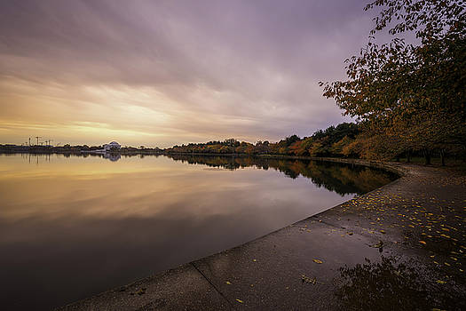 Fall On The Tidal Basin by Michael Donahue