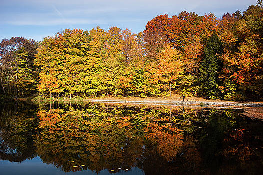 Fall Ontario forest reflecting in pond  by Peter Pauer