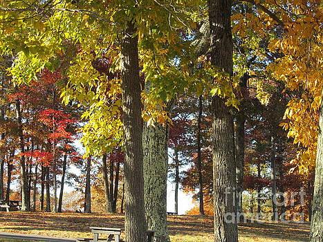 Fall Picnic by Loretta Pokorny