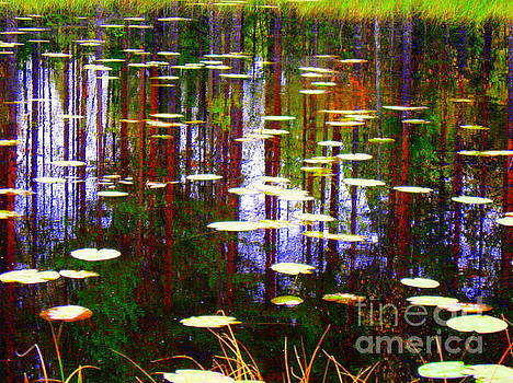 Fall Pond by Pauli Hyvonen
