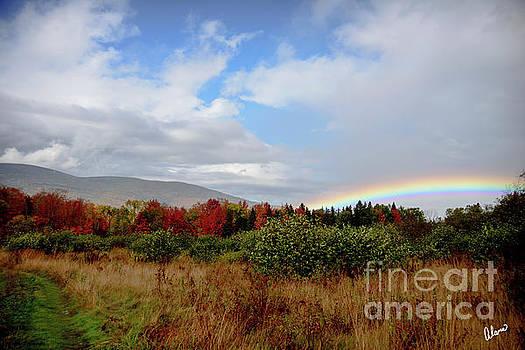 Fall Rainbow by Alana Ranney