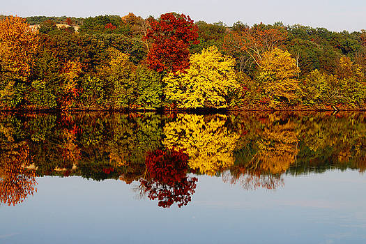 Fall Reflection by Cassandra  Pozulp