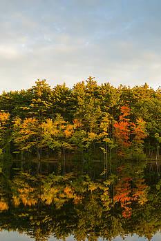 Fall Reflection by Michael Wall