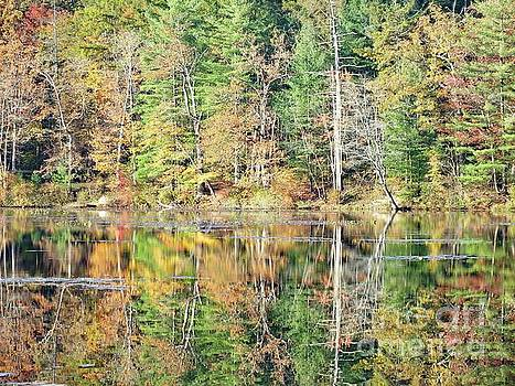 Cindy Treger - Fall Reflections - 2