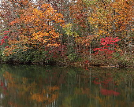Fall Reflections by Jim Allsopp