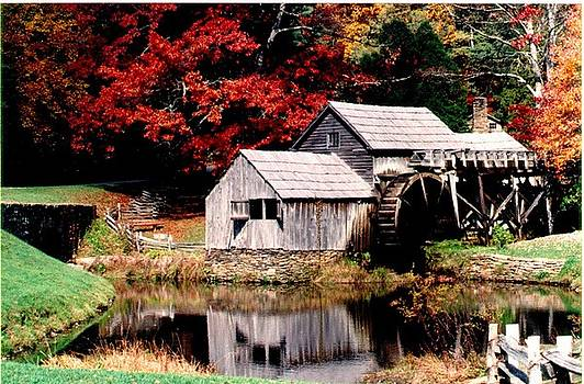 Fall Reflections by Kelly Luquer