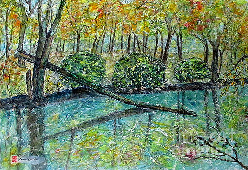 Fall Reflections by Norma Boeckler