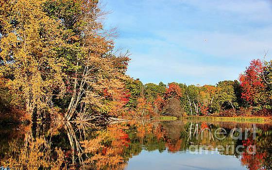 Sandra Huston - Fall Reflections on Sabattus River