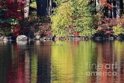 Sandra Huston - Fall Reflections On Woodbury Pond, Maine