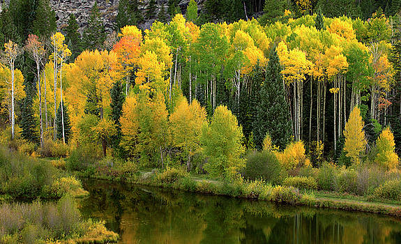 Fall Reflections One by Jeff Jewkes