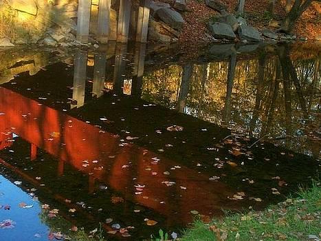 Fall Reflections by Rachel Minniear