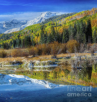 Fall Reflections by Steven Reed