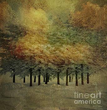 Fall Returns by Barbara Milton