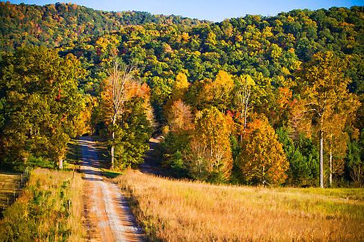Fall Road by Paul Bartoszek