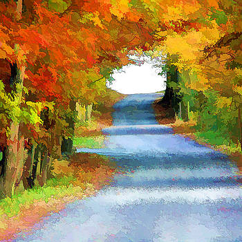 Fall Roads by Beth Fox