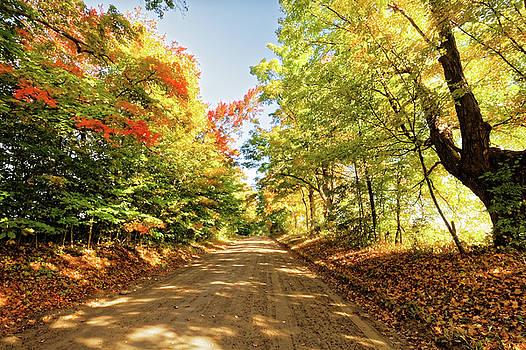 Fall Roads by Lars Lentz