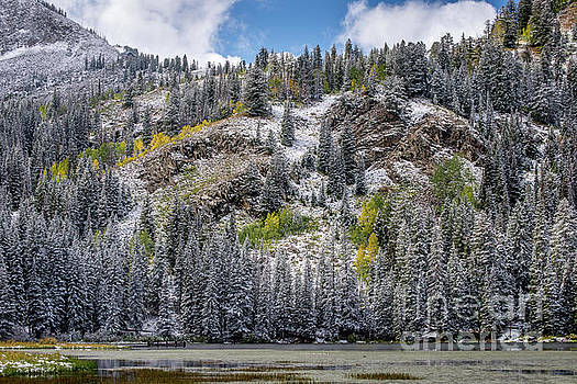 Fall - Silver Lake - Wasatch Mountains - Utah by Gary Whitton