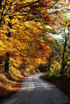 Fall Splendor by Cheryl Helms