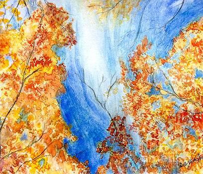 Fall Splendor by Deb Stroh Larson