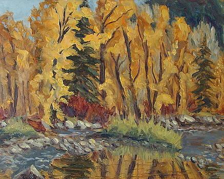 Fall Splendor Elk River Steamboat Springs Colorado by Zanobia Shalks