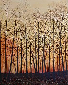 Fall Splendor by Sharon Steinhaus
