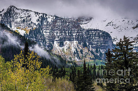 Fall Storm in Wasatch Mountains - Utah by Gary Whitton