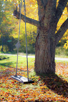Fall Swing by Steven David Roberts