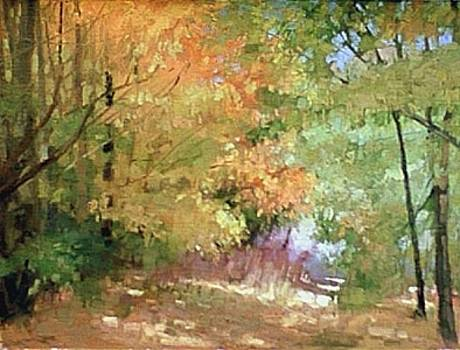 Fall Woods by Chuck Marshall