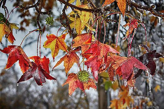 Fall by Yvonne Emerson AKA RavenSoul