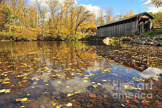 Terri Gostola - Fallasburg Covered Bridge
