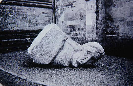 Fallen by Foto Aureo