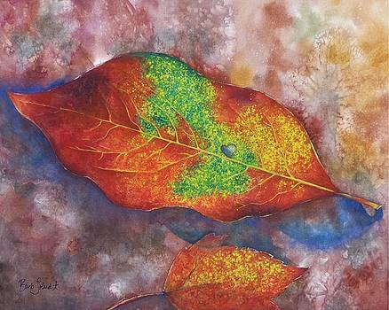 Leaf Exclamation by Barb Toland