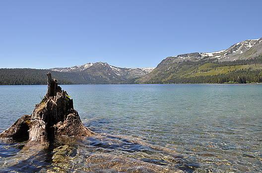 Fallen Leaf Lake by Robbie Bryan