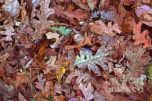 Fallen Leaves by Anthony Forster