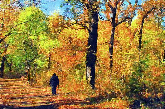 Fallen Leaves by Cedric Hampton